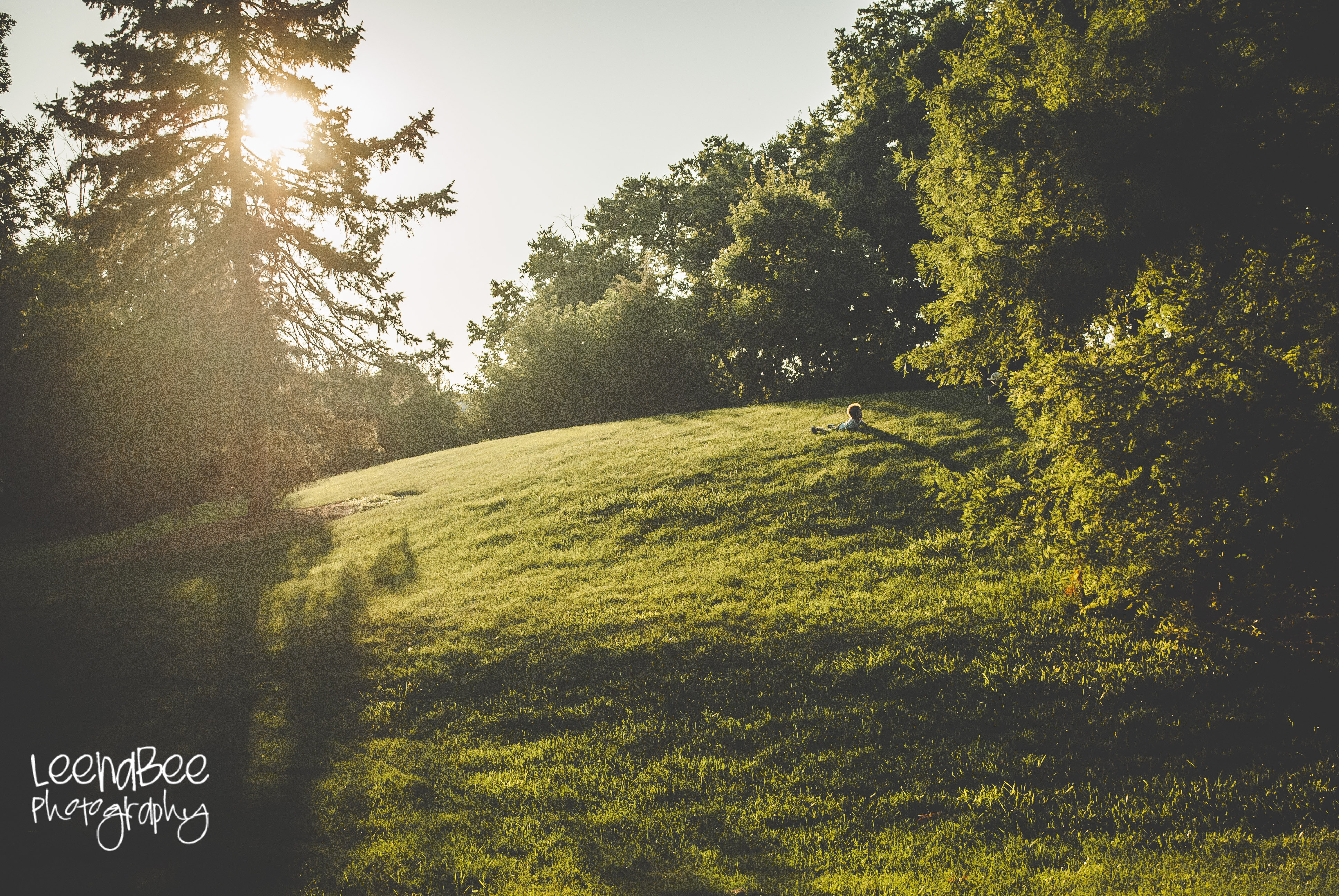 monterey-park-blog-1