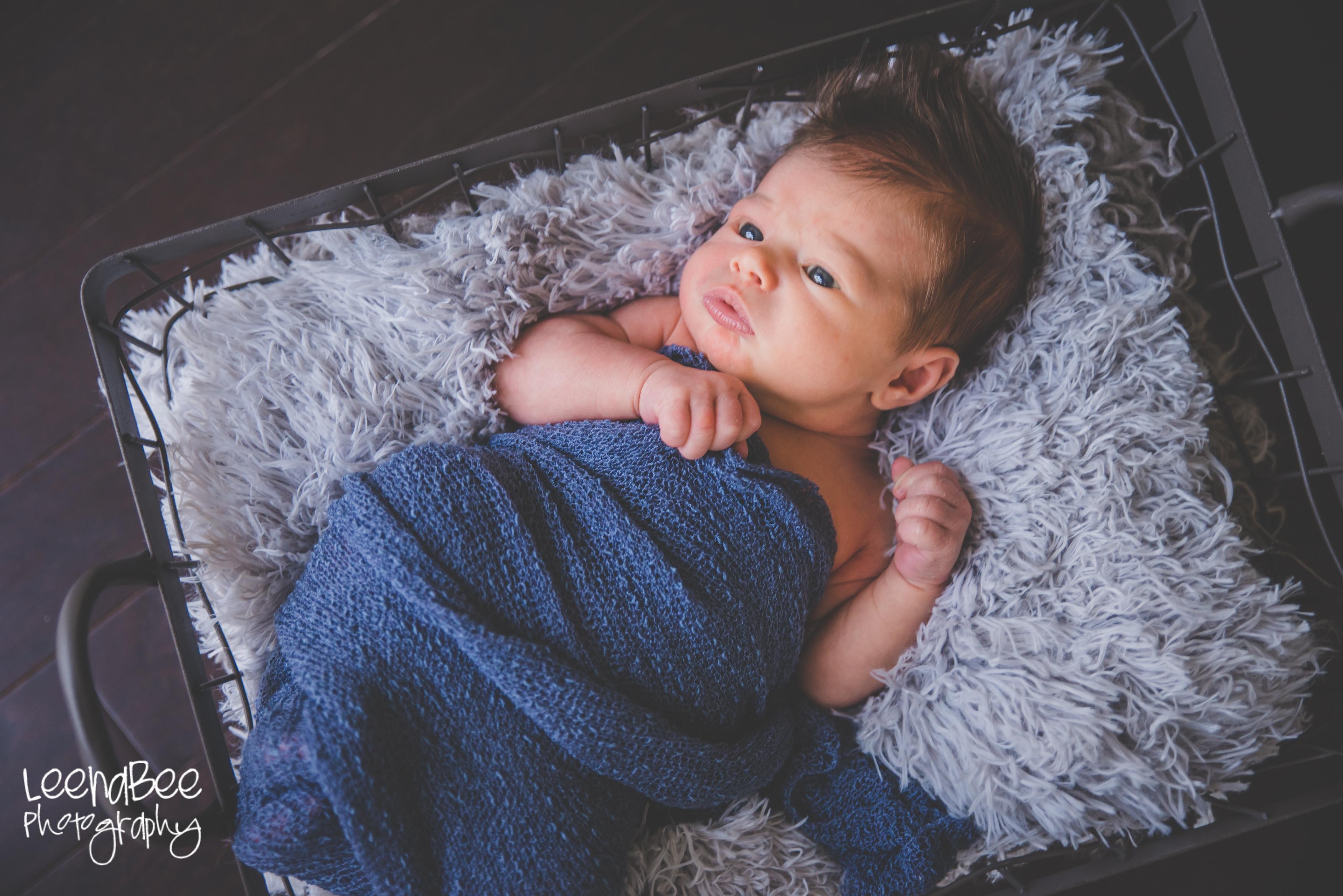Doty newborn-1
