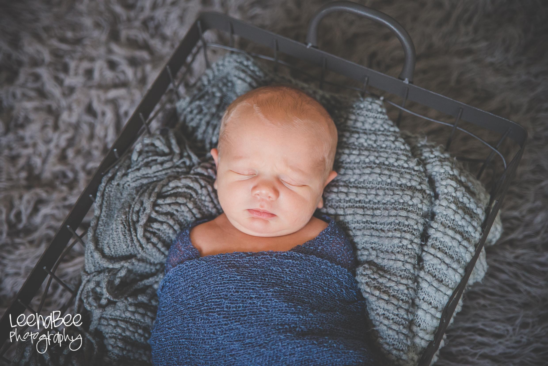 Meredith newborn-4