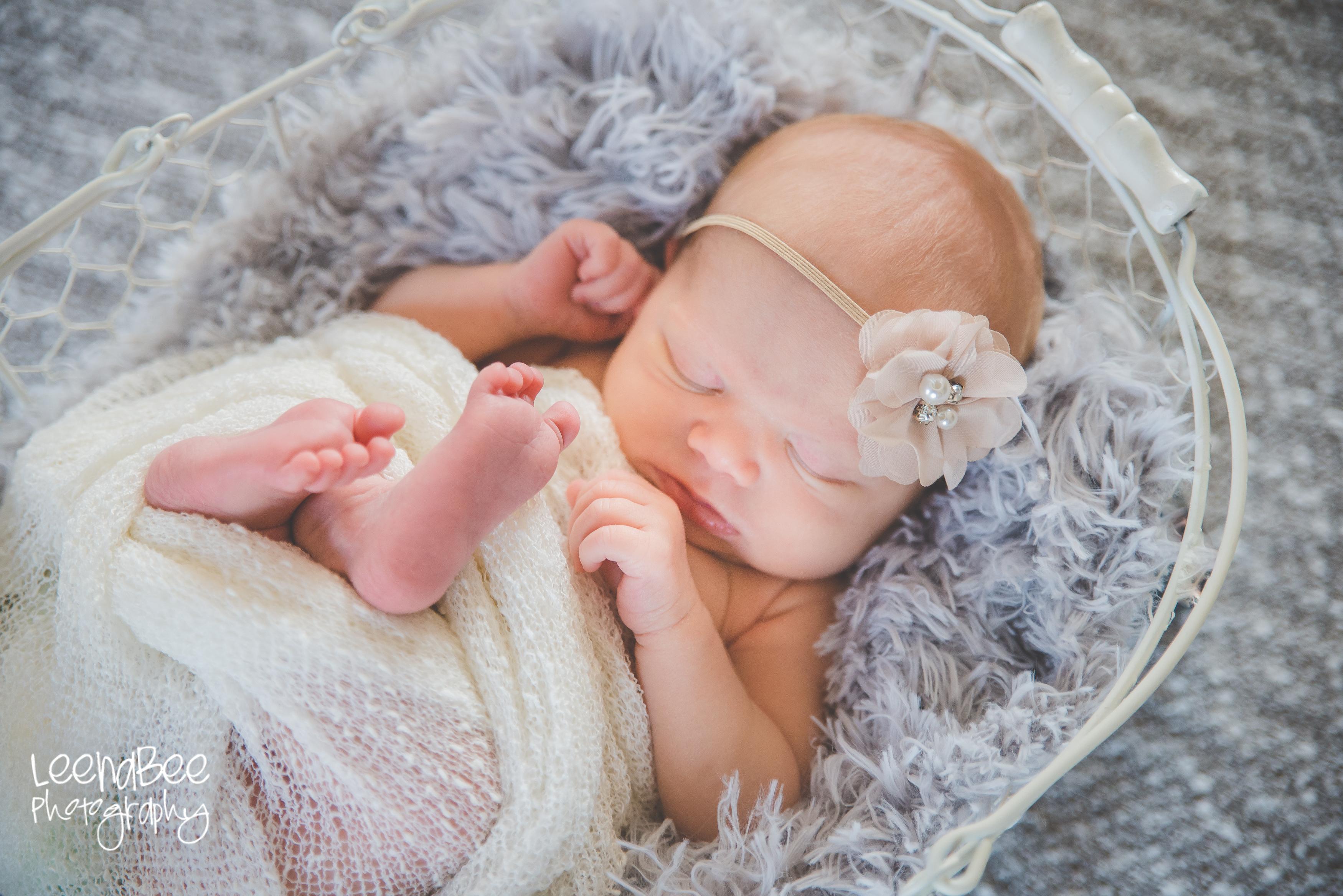Carroll lifestyle newborn-6