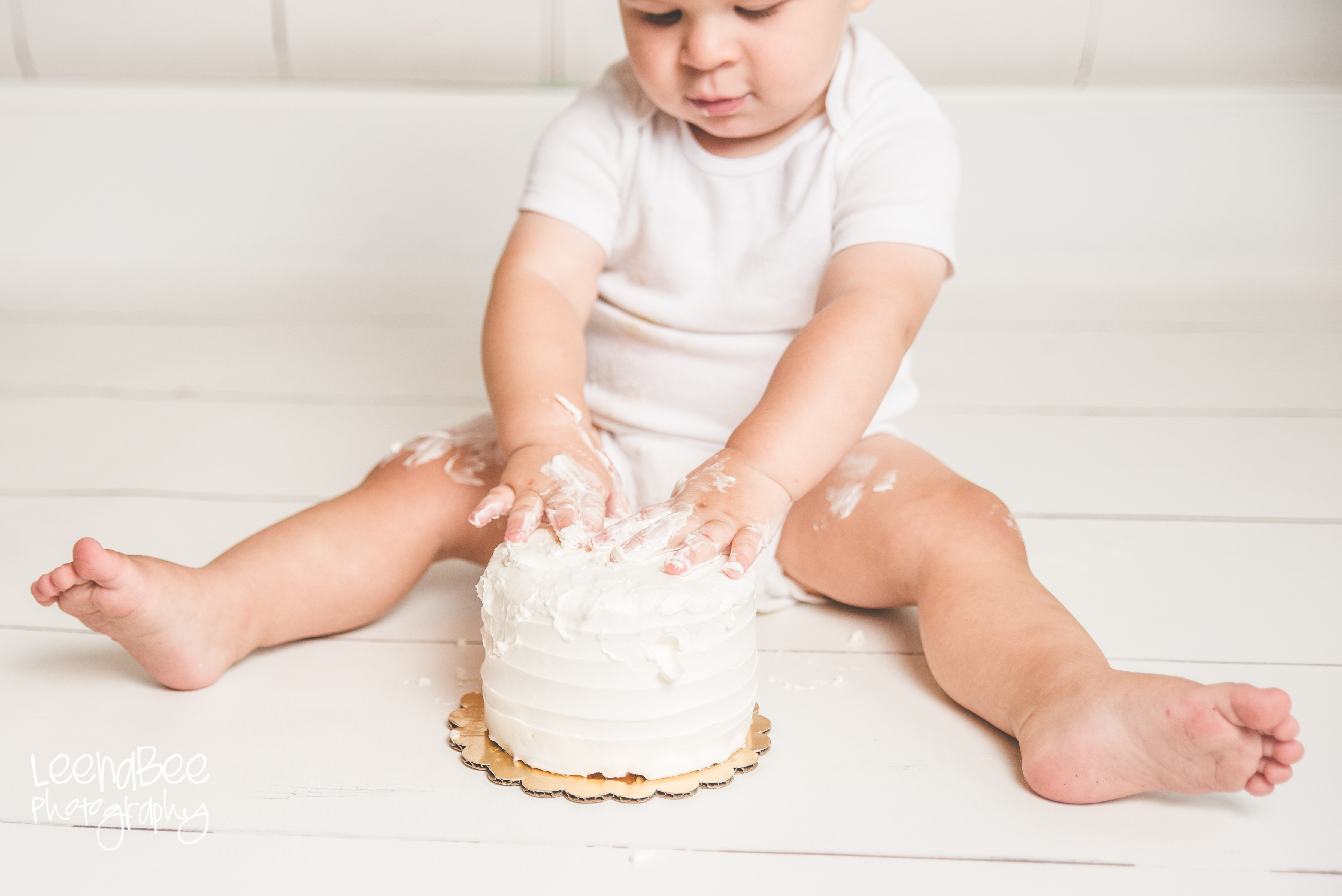 Cake smash first birthday dublin ohio-13